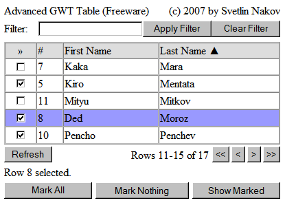 GWT Advanced Table - screenshot from November 2007